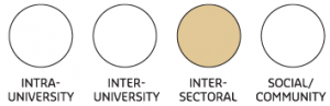 Image of four circles depicting four different types of partnerships. Inter-sectoral is...